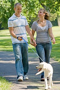 Couple walking dog in park on pretty day