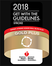 Gold Get with The Guidelines Logo 2018